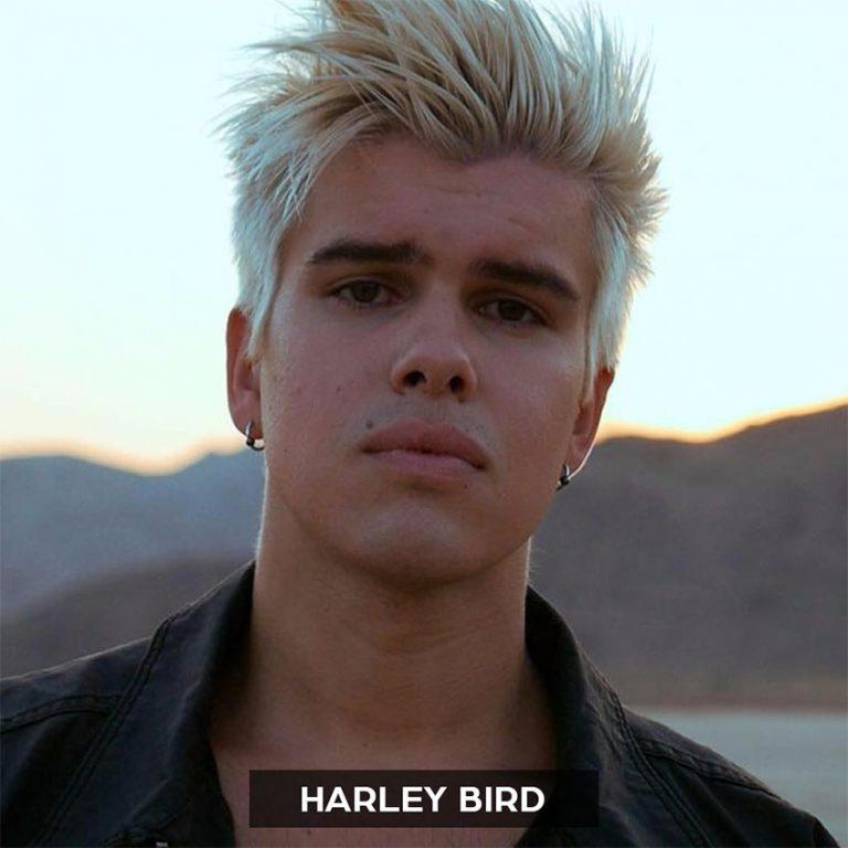 Raz Klinghoffer - Music Producer Los Angeles - Artist - Harley Bird