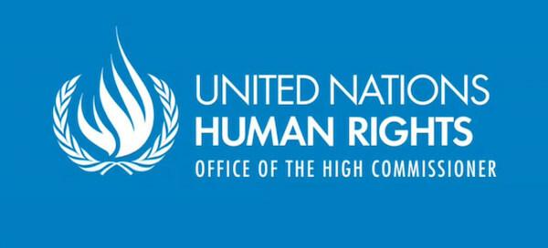 Raz Klinghoffer partner - United Nations human rights office